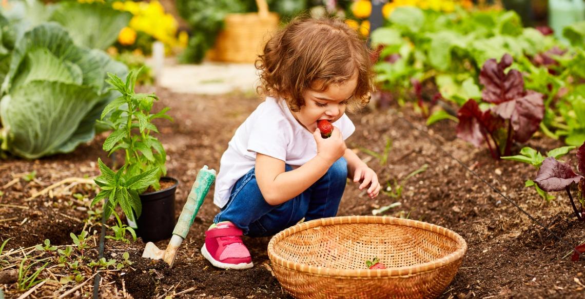 Como ter uma horta caseira pode ajudar no desenvolvimento do seu pequeno