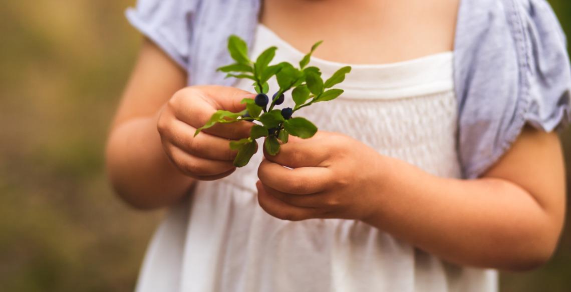 Por que falar da importância da Floresta Amazônica para crianças?