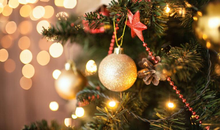 Contos de Natal: Árvore de Natal