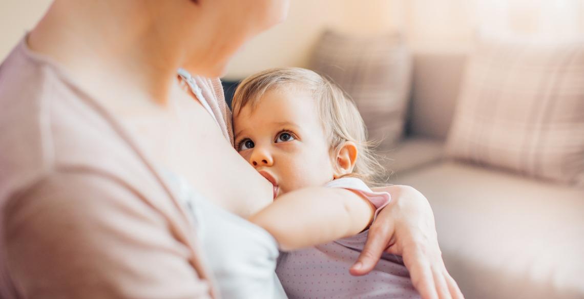 Amamentação na gravidez: quando se espera o segundo filho
