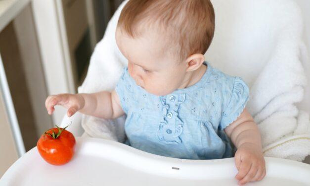 Quais os tipos de introdução alimentar para bebês?